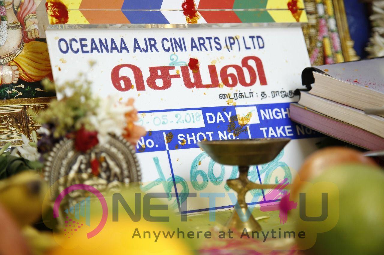 Sayali Movie Pooja Pics Tamil Gallery