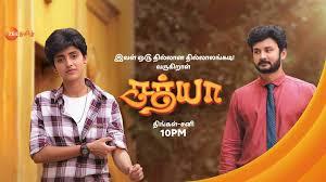 Serials tamil zee tv Rettai Roja