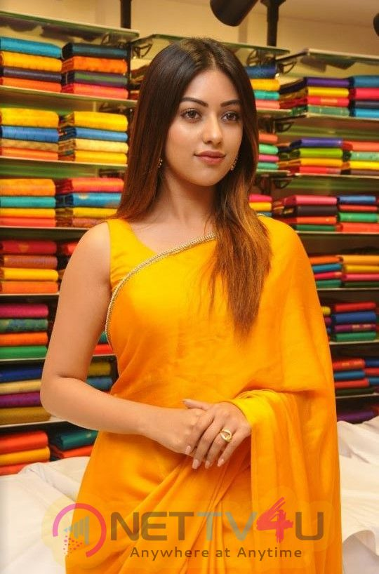 Actress Anu Emmanuel Angelic Images Telugu Gallery