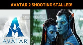 Avatar Sequel Shooting Stalled!
