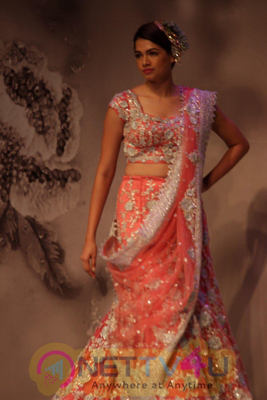 Celebs Celebrate Pallavi Jaikishan's 45year In Industry Of Fashion Show Pics Hindi Gallery