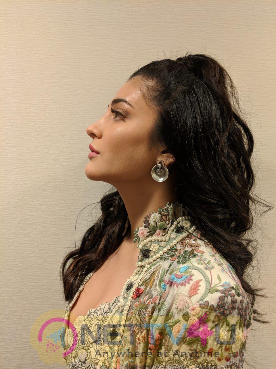 Actress Shruti Haasan In New York Pics Tamil Gallery