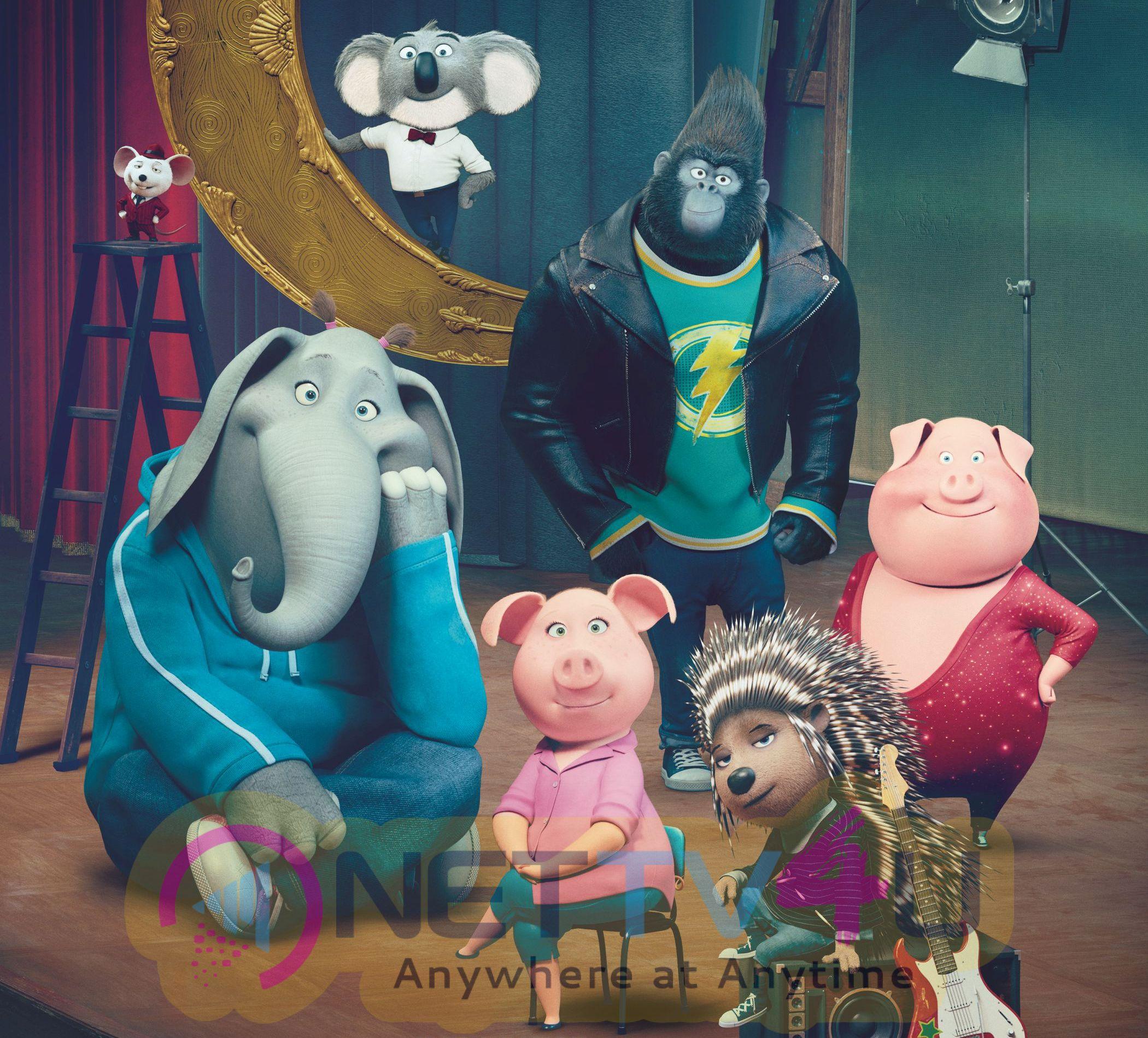 Sing Movie Latest High Quality Stills English Gallery