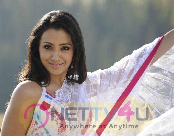 Actress Trisha Krishnan Cute Pics Tamil Gallery