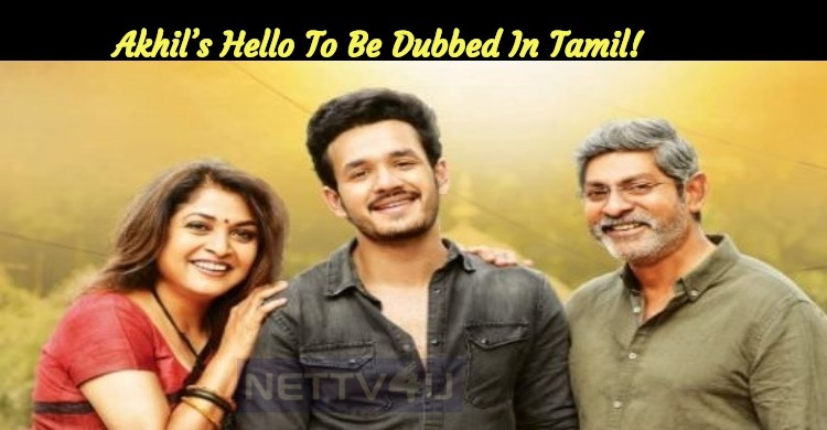 Akhil S Hello To Be Dubbed In Tamil Nettv4u