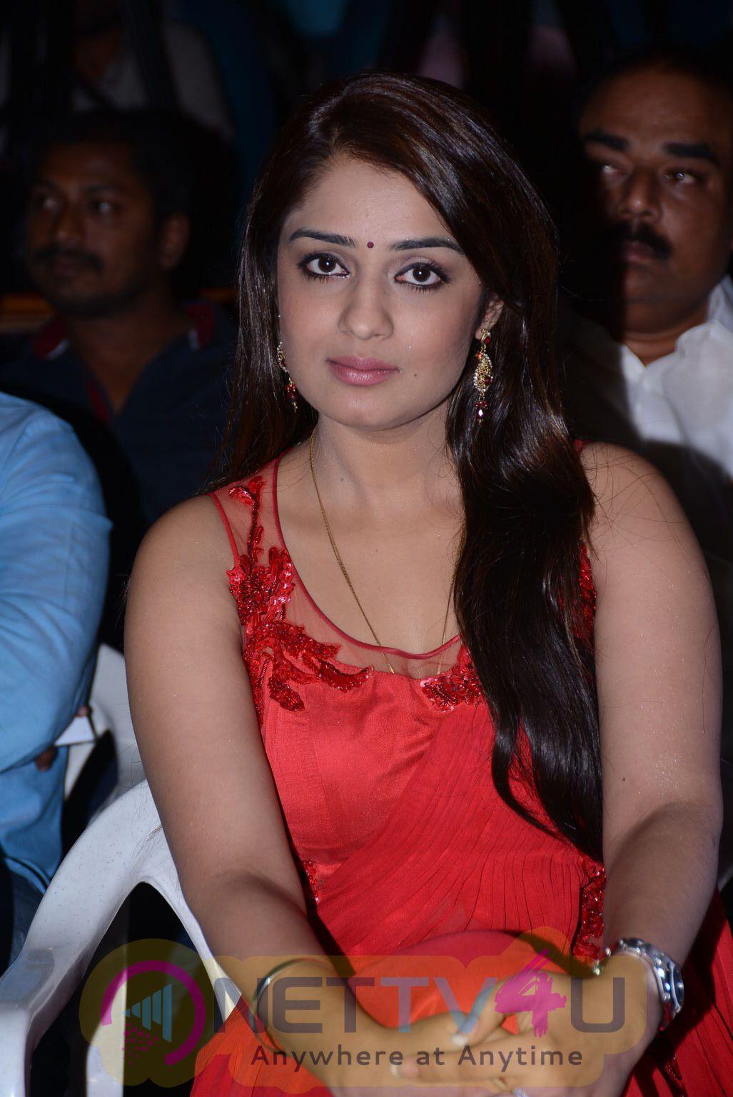 Actress Nikhita Latest Photo Shoot Stills Telugu Gallery
