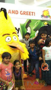 Angry Bird Visits Chennai Stills English Gallery