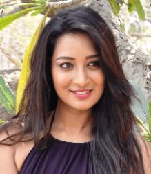 Bhanu Sree Telugu Actress