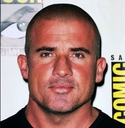 Dominic Purcell English Actor