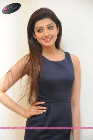 Kannada Actress Pranitha Subhash Hot Photo Gallery