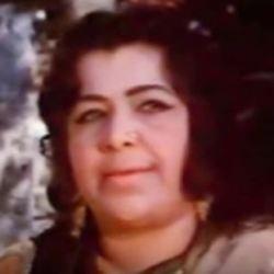 Nigar Sultana Hindi Actress