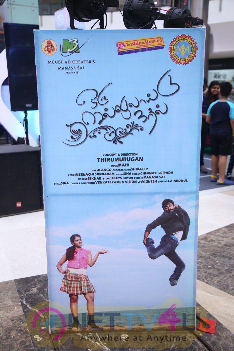 Oru Celluloid Kadhal Album Launch Photos Tamil Gallery