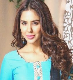 Sonam Bajwa Hindi Actress