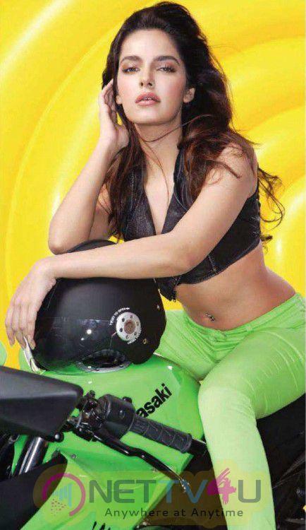 Bollywood Actress Shazahn Padamsee Sexy Images