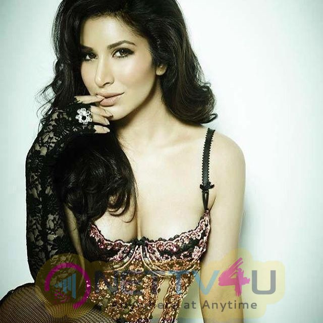 Actress Sophie Choudry Glamorous Images