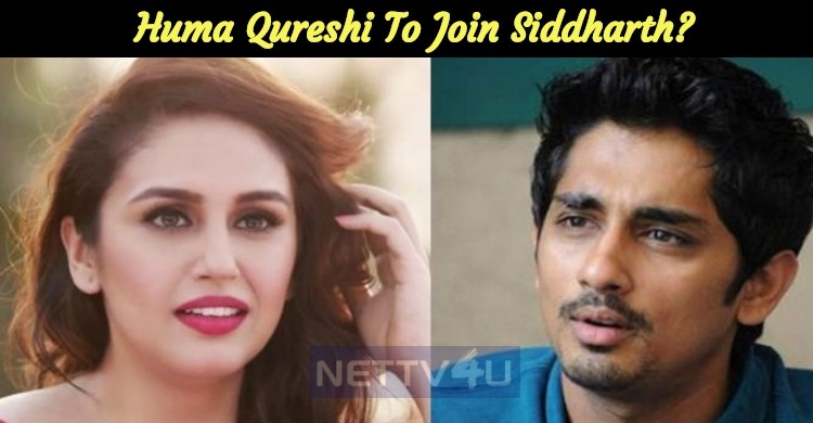 Huma Qureshi To Join Siddharth?