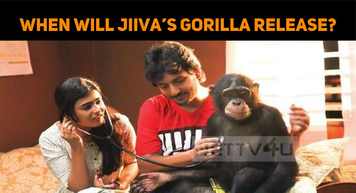 When Will Jiiva's Gorilla Release?