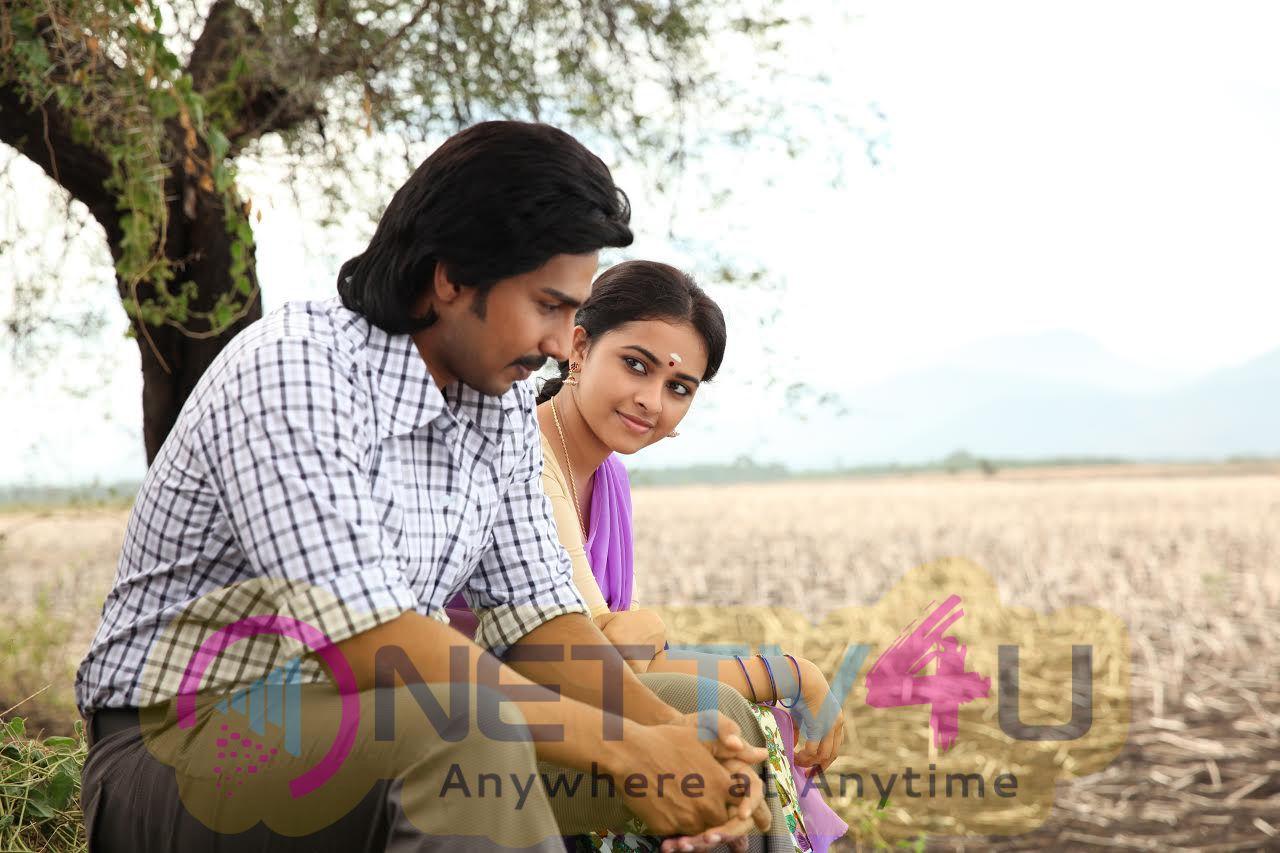 Maaveeran Kittu New Movie  Cute Stills Tamil Gallery