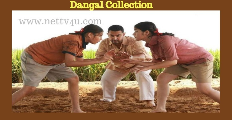 Dangal's Real Collection Detail Revealed!