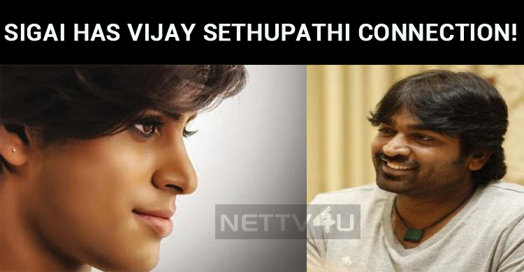 Sigai Has Vijay Sethupathi Connection!