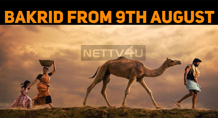 India's First Camel Movie Gets A Release Date!