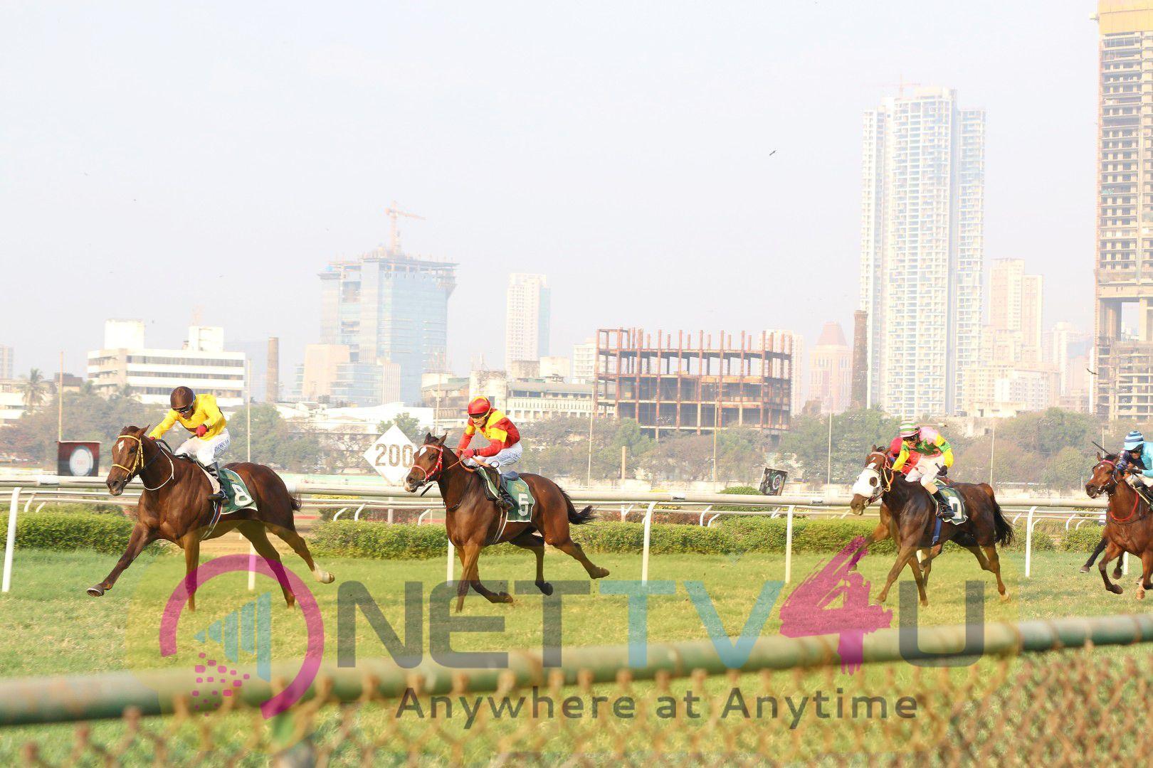 Radiant Photos Of Sunny Leone In The Attila Million Race