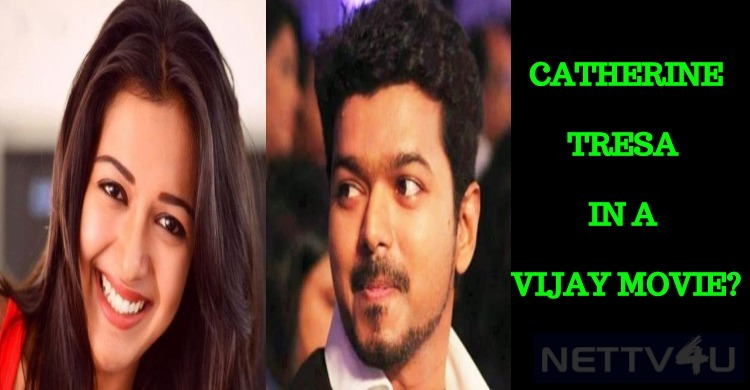 Catherine Tresa In Vijay Movie?