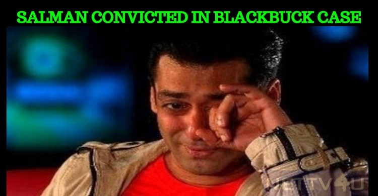 Salman Khan Convicted; Saif And Tabu Acquitted ..