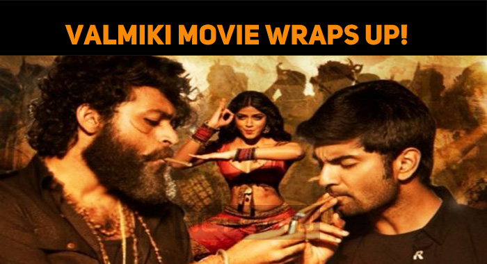 Valmiki Movie Wraps Up! Gets Ready For The Release!