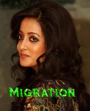 Migration Movie Review Hindi Movie Review