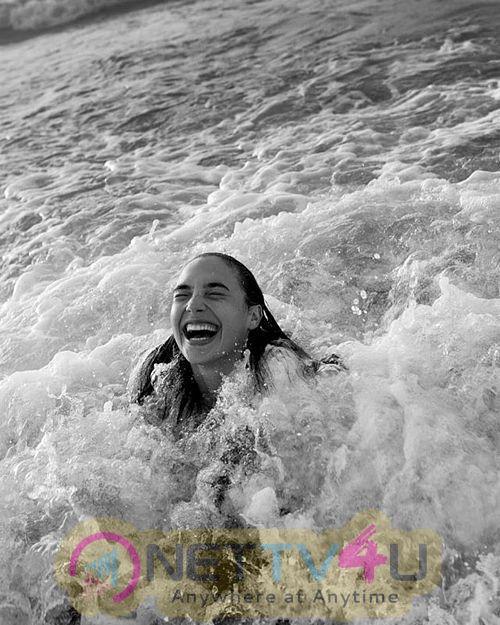 Actress Gal Gadot Charming Pics