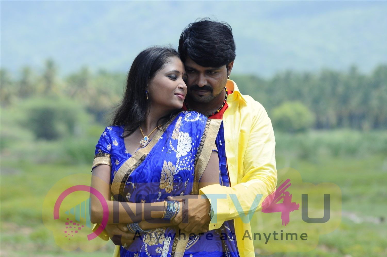 Pei Irukka Illaiyaa  Movie Images Tamil Gallery