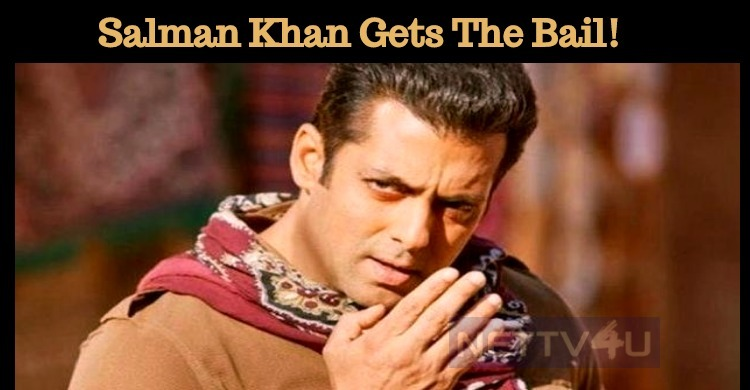 Blackbuck Poaching Case: Salman Khan Gets The B..
