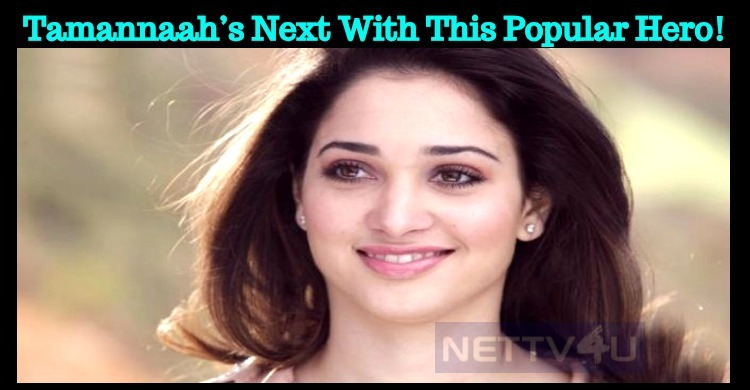 Tamannaah's Next With This Popular Hero!