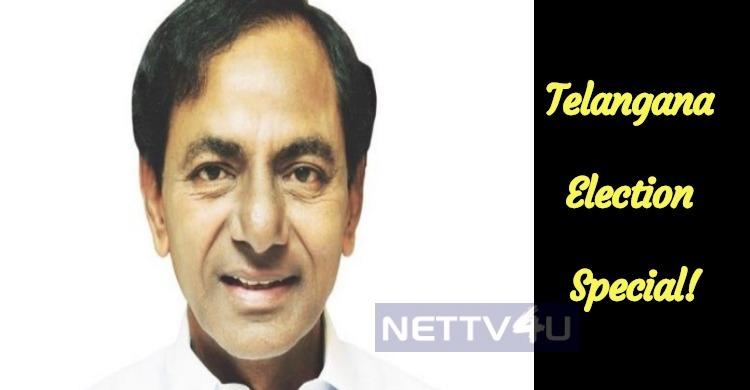 Telangana Election Special!