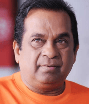 Director's Wife Irked At Remarks By Brahmanandam
