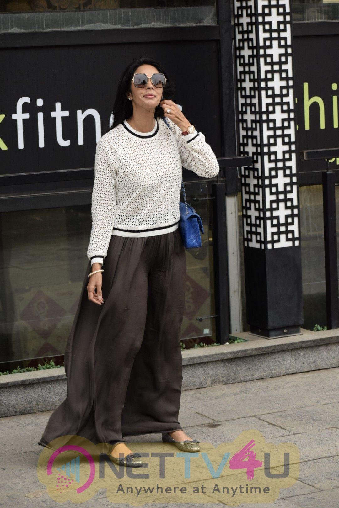Mallika Sherawat Sptoed In Indigo Fitness  Hindi Gallery