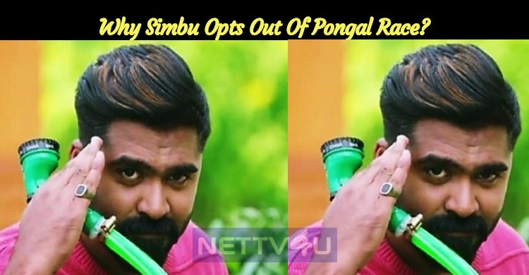Why Simbu Opts Out Of Pongal Race?