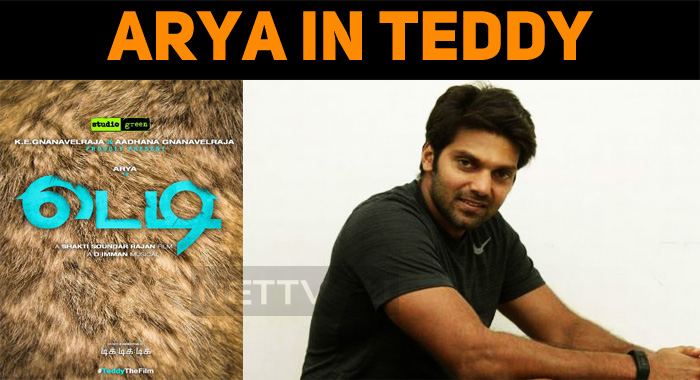 Arya's Next Titled As Teddy!