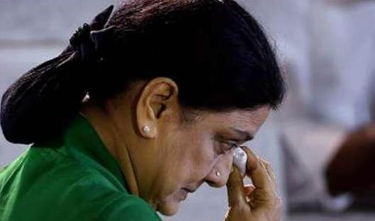 Sasikala Family Trapped! IT Raid In 100 Places!