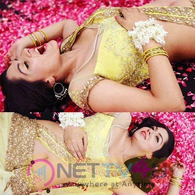 Sakshi Chaudhary New Pics Telugu Gallery