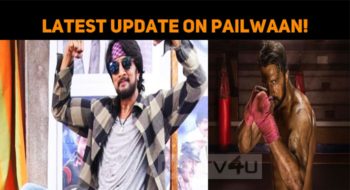 Latest Update On Pailwaan!