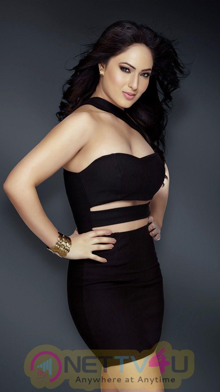 Nikesha Patel Excellent Photo Shoot Images