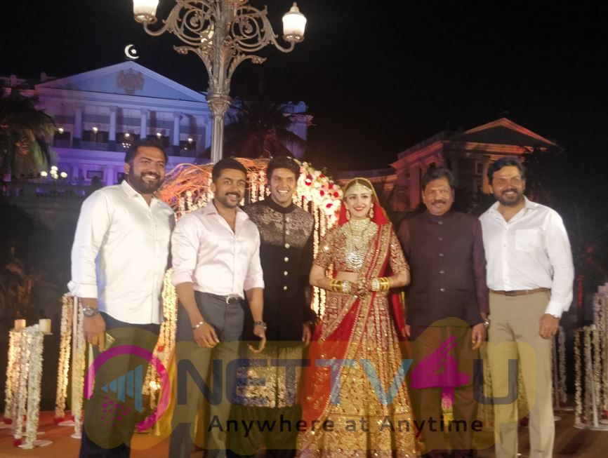 Actor Arya And Sayesha Saigal Marriage Stills Tamil Gallery