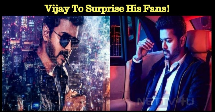 Vijay To Surprise His Fans! Tamil News