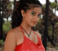 Kannada Actress Harshika Moves To Tamil And Malayalam