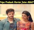 Priya Prakash Varrier Joins Akhil?