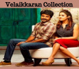 Velaikkaran Collection At The End Of Fifteen Days… Tamil News