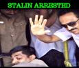 DMK Working President Stalin Arrested! Tamil News