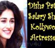 Disha Patani's Salary Shocks Kollywood Actresses! Tamil News